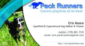 Pack Runners Dog Walking