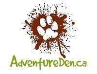 Canine Adventure Den Daycare