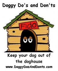 Doggy Do's & Don'ts Behavioural Training